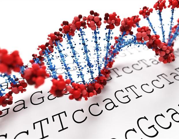 Новое понимание генетики человека