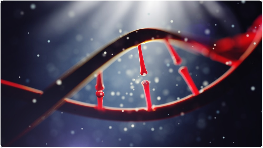 Большое исследование подавляет идею «гена гея»