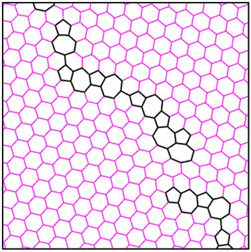 Границы зерен в графене не влияют на спиновый транспорт