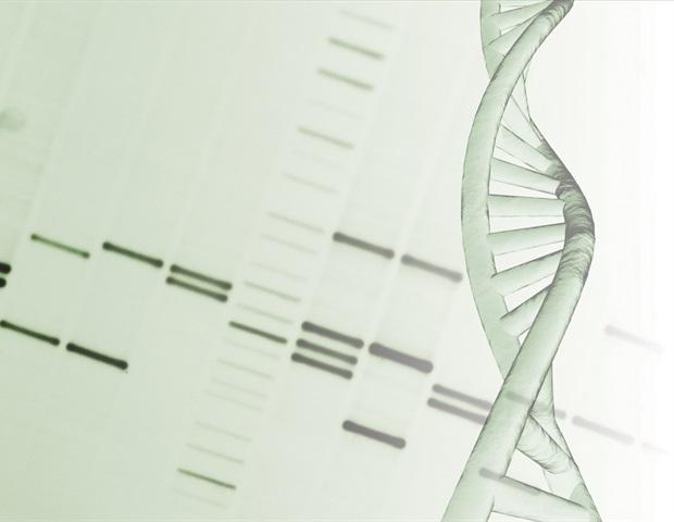 Исследование показывает, как двойное ДНК-кодирование может помочь улучшить диагностику грибковых инфекций