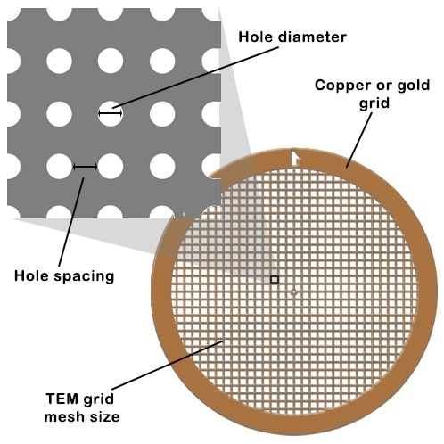Labtech назначен дистрибьютором карбоновых пленок для подложек C-flat TEM компании Protochips