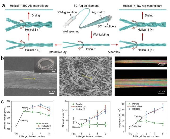 Новая стратегия разработки для изготовления микроволокон на основе наноцеллюлозы