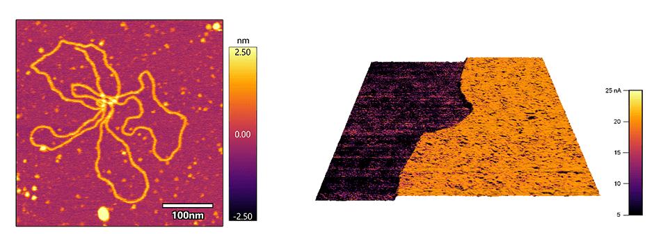 Представляем наноэлектрические аксессуары и аксессуары для контроля окружающей среды для крупногабаритного АСМ Jupiter XR от Oxford Instruments Asylum Research